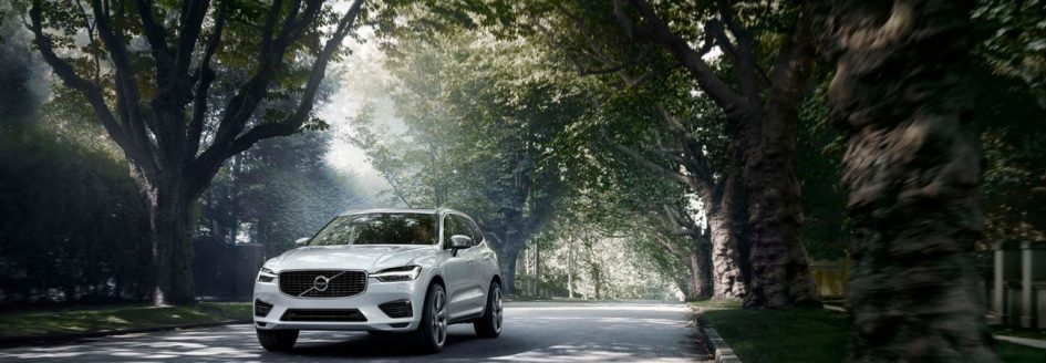 White 2019 Volvo XC60 driving road surrounded by trees